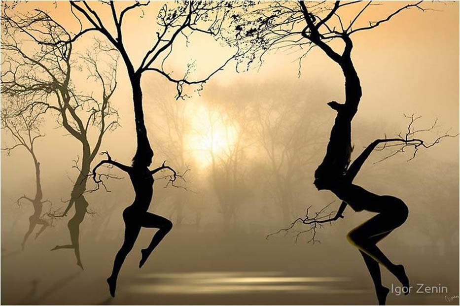 danse et arbre